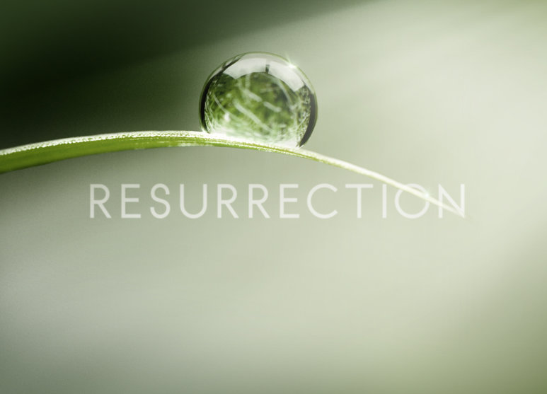 Afiche Resurrection - Origen ABC