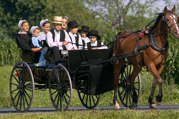 Familia Amish - Origen desconocido