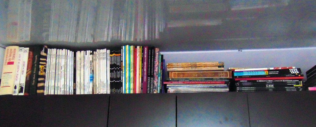 Colección personal de novelas gráficas - Colección TMN
