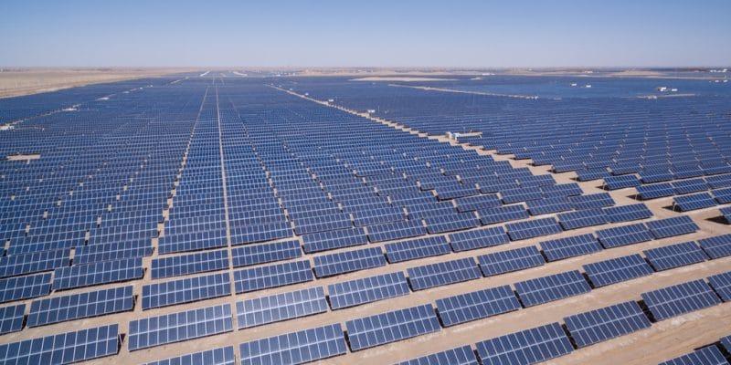 Campo de paneles solares en Egipto - Foto Shutterstock