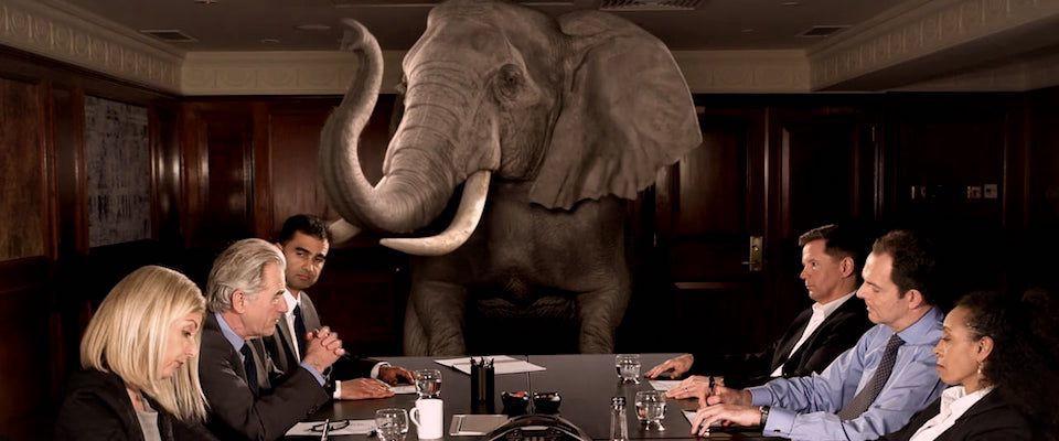 Un elefante en una sala de reunión - Origen desconocido