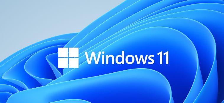 Logo de presentación de Windows 11 - Captura de pantalla pagina Microsoft