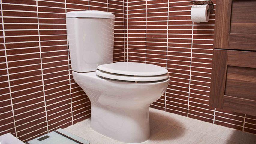Un baño terrestre convencional - Origen desconocido